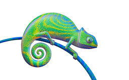 Ljust - grön kameleont på vit bakgrund, tolkning 3d Sikt s Fotografering för Bildbyråer