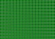 LJUST - grön PLÄDMODELL royaltyfria foton