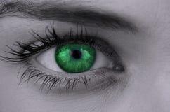 Ljust - grönt öga på kvinnlig framsida Royaltyfri Fotografi