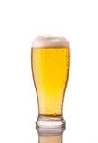 ljust kallt öl i frostigt exponeringsglas på vit royaltyfri bild