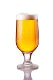 Ljust kallt öl i frostigt exponeringsglas som isoleras på vit royaltyfri foto