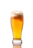 Ljust kallt öl i frostigt exponeringsglas som isoleras på vit arkivfoto