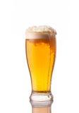Ljust kallt öl i frostigt exponeringsglas som isoleras på vit arkivfoton