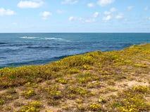 Ljust landskap för strandvår Fotografering för Bildbyråer
