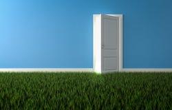 Ljust ljust skina till och med öppen dörr i rum med växande gras Royaltyfri Foto