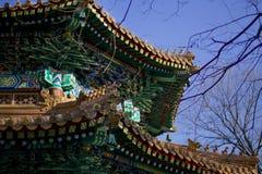 Ljust mönstrat tak av den buddistiska kloster Royaltyfri Fotografi