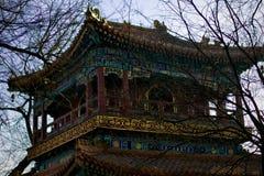 Ljust mönstrat tak av den buddistiska kloster Royaltyfri Bild