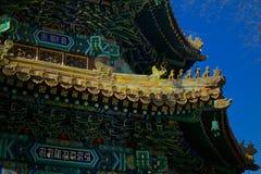 Ljust mönstrat tak av den buddistiska kloster Royaltyfria Bilder