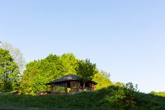 Ljust - naturlig gångbana för grön skog i ljus för solig dag Solskenskogträd Sol till och med skog för livlig gräsplan Fotografering för Bildbyråer
