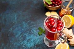 Ljust rödbrun drink för tranbärcitron royaltyfri foto