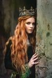 Ljust rödbrun drottning nära slotten arkivbilder