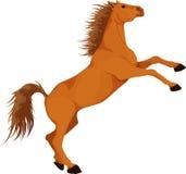 Ljust rödbrun häst Arkivbild