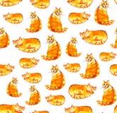 Ljust rödbrun katter Sömlös modell för vattenfärg på vit bakgrund Royaltyfria Bilder