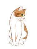ljust rödbrun ståendetabby för katt Royaltyfria Bilder