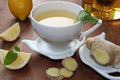 Ljust rödbrun te med apelsinen och citronen Fotografering för Bildbyråer