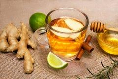 Ljust rödbrun te och limefrukt på tefatet med den rå ingefäran och honung i bet royaltyfria foton