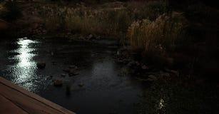 Ljust reflektera på mörkt flodvatten royaltyfri foto