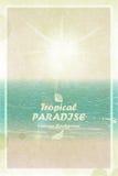 Ljust soligt sommarkort för tappning Retro tropiskt paradis Vecto Royaltyfri Foto