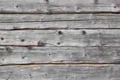 Ljust trä texturerar Arkivbilder
