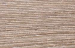 Ljust trä texturerar Arkivbild