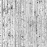 Ljust trä texturerar Fotografering för Bildbyråer