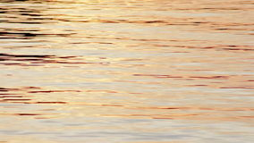 Ljust vattensorl på yttersidan av en nordlig sjö på solnedgången lager videofilmer