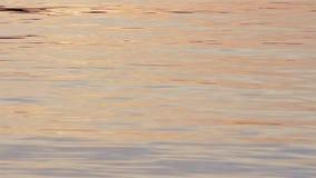 Ljust vattensorl på yttersidan av en nordlig sjö på solnedgången stock video
