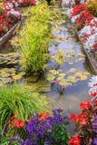 Ljuvt blom- parkerar Arkivbild