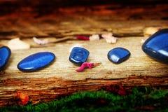 Läka stenar på gammalt trä Arkivfoto