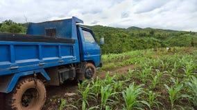 LKW auf dem Ernte-Gebiet stockbild