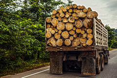 LKW, der Bauholz transportiert Stockbilder