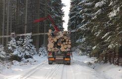 LKW mit Anmeldungsstraße im Wald im Winter Lizenzfreie Stockbilder