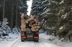 LKW mit Anmeldungsstraße im Wald im Winter Stockfoto