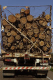 LKW mit Baumstämmen Stockfotos