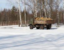 LKW mit firewoods Lizenzfreie Stockbilder
