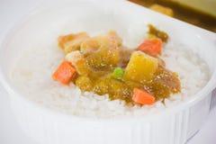 Llévese la comida, curry tailandés Massaman con arroz Imagenes de archivo