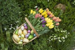 Ll del ¼ del fà del trug del giardino delle uova di Pasqua e dei tulipani Fotografia Stock