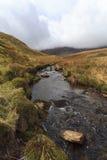 Llaethnant, a small stream leading from Creiglyn Dyfi Stock Photo