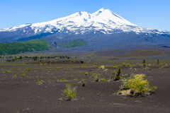 Llaima volcano, Conguillio National Park, Chile. Llaima volcano, Conguillio National Park (Chile Stock Photos