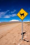 Llama οδικό σημάδι Στοκ Φωτογραφίες