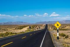 Llama που διασχίζει το οδικό σημάδι στο Περού, Νότια Αμερική στοκ εικόνα