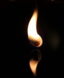 Llama Foto de archivo