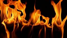 Llama anaranjada de madera del fuego magnífico que quema en cierre de la cámara lenta encima del tiro de la chimenea satifsying d almacen de metraje de vídeo