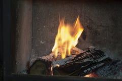 Llama ardiendo del árbol imágenes de archivo libres de regalías