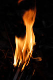Llama ardiente del fuego imágenes de archivo libres de regalías