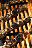 Llama asada a la parilla Foto de archivo libre de regalías