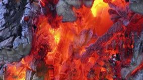 Llama caliente del calor de la quemadura caliente del fuego almacen de metraje de vídeo