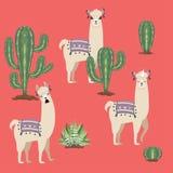 Llama con los cactus stock de ilustración