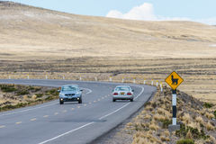 Llama crossing in the peruvian Andes Arequipa Peru Royalty Free Stock Photos