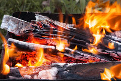 Llama del fuego con leña y carbones rojos Fotos de archivo libres de regalías